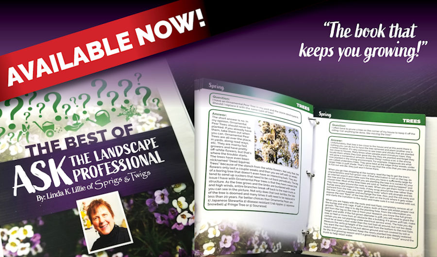 Learn more about landscaping and caring for your plants, trees, and lawn by getting our book, The Best of Ask The Landscape Professional