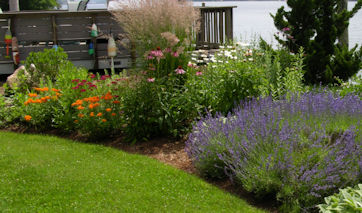 Landscape Design and Landscape Maintenance Services for East Lyme, Niantic, Old Lyme, and Old Saybrook.