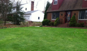 Organic Lawn Care and Lawn Mowing Services for East Lyme, Niantic, Old Lyme, Ledyard, Groton, and Mystic.